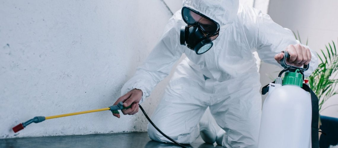 pest control worker spraying pesticides on floor at home